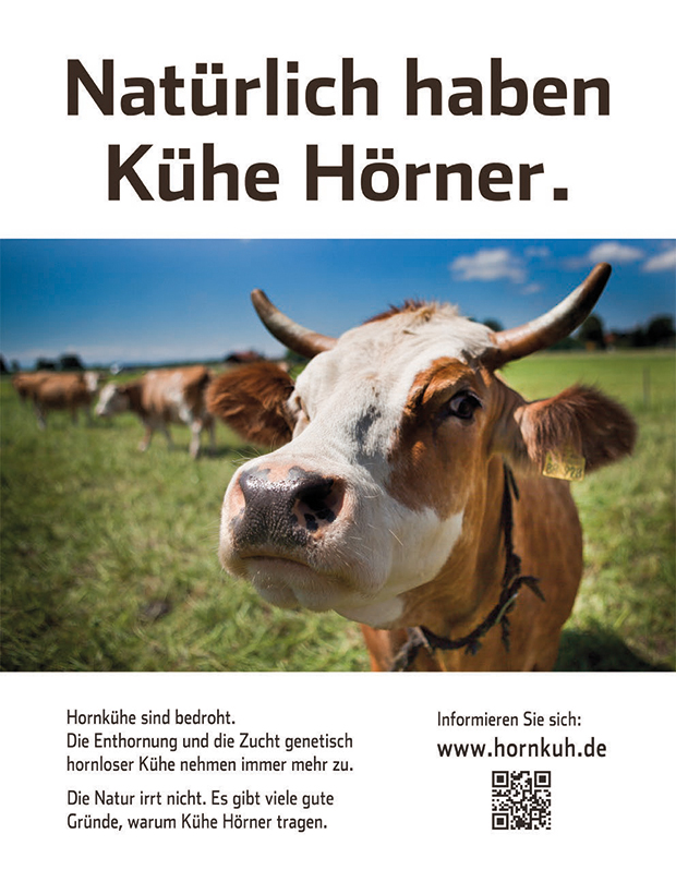 Demeter-Kühe haben Hörner | Demeter e.V.